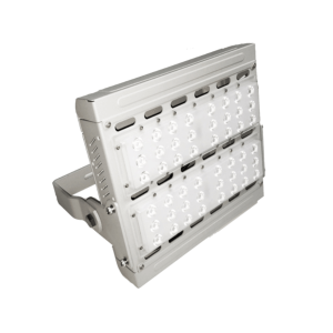 LED Flood Light : RF-2A